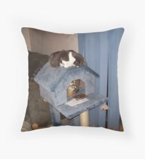 Anybody Home? Throw Pillow
