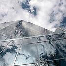 High Reflection by Rosina  Lamberti