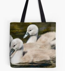 River Derwent Cygnets, Workington, Cumbria Tote Bag