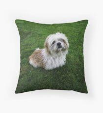 Cute Shih Tzu in the grass Throw Pillow