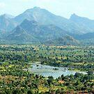 View from Sigiriya by Kylie Reid