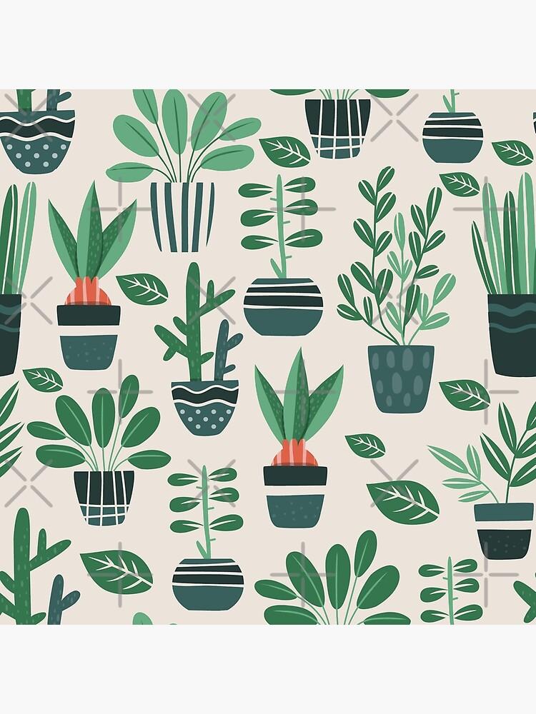 Topfpflanzen von loveperiwinkle