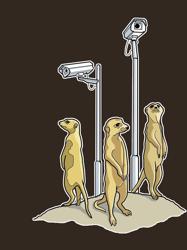 Meerkat CCTV by rubyred