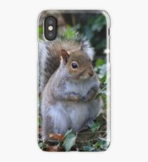Cheeky Squirrel iPhone Case/Skin