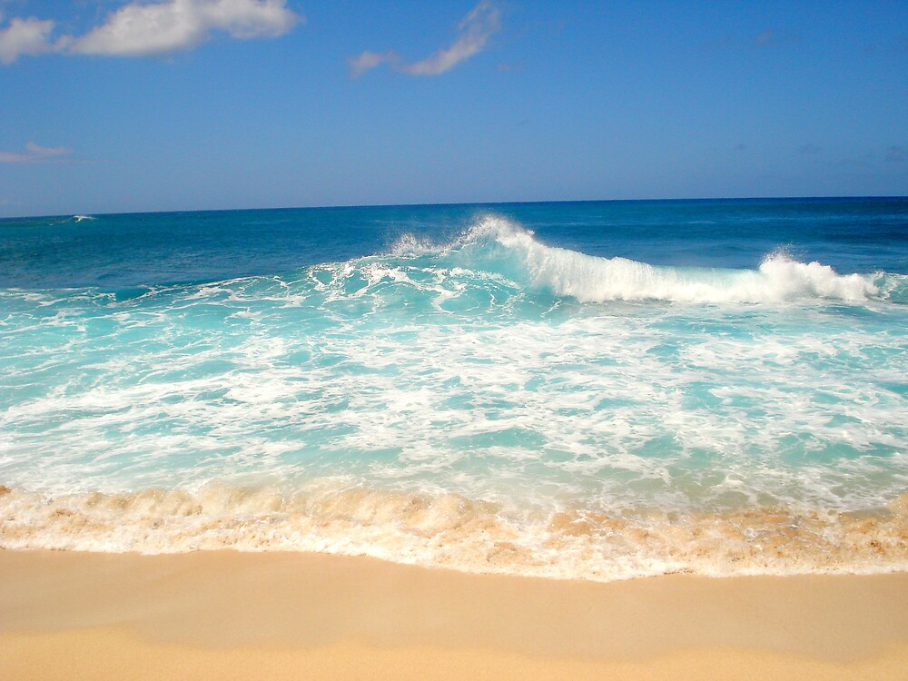 North Shore Hawaii by smolsey