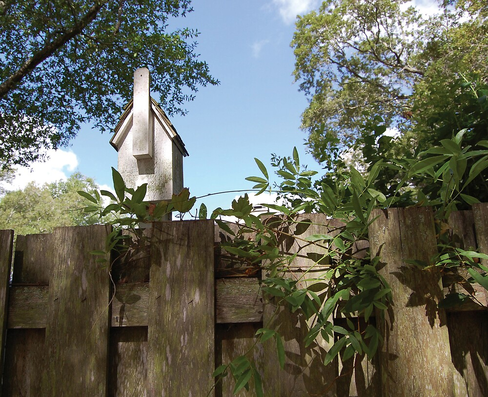 Birdhouse by Emilie Pennington