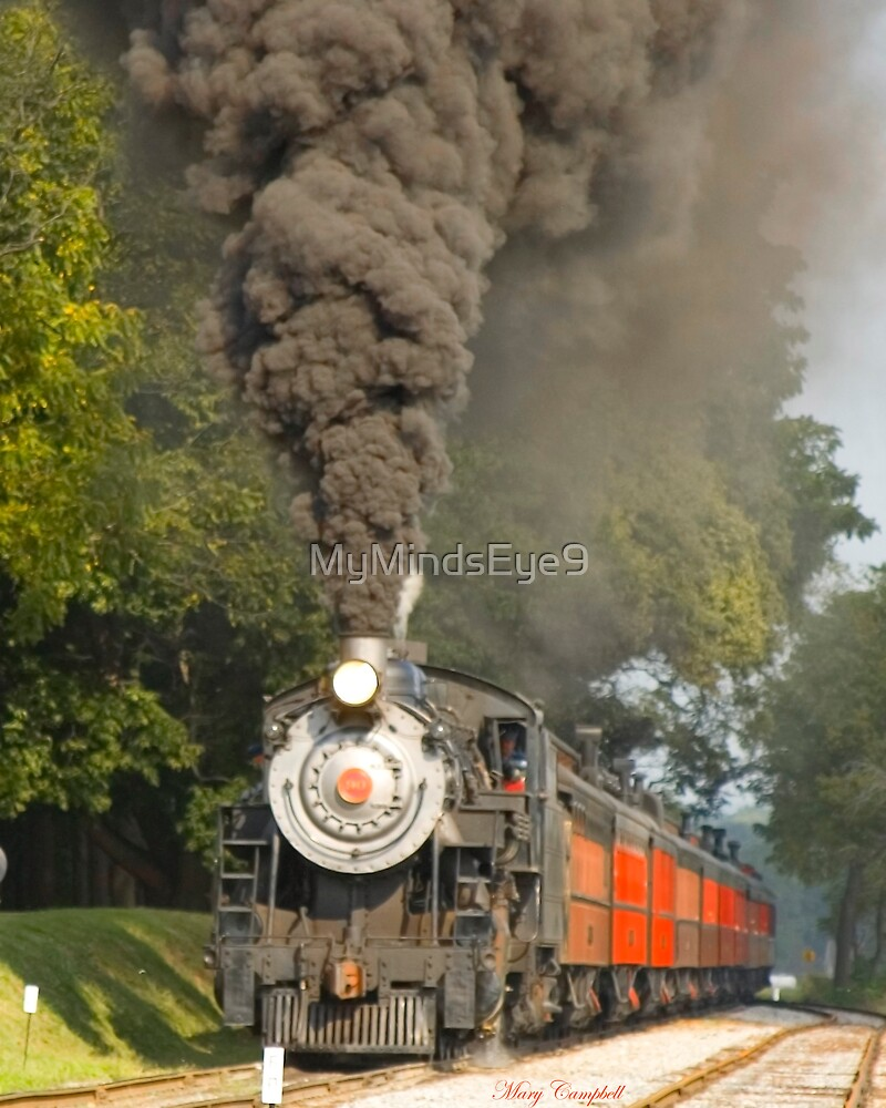 Puffing Away in Strasburg PA © by Mary Campbell
