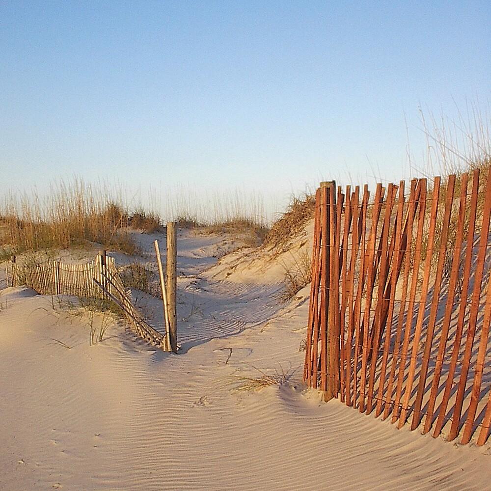 Dunes at Huguenot by Emilie Pennington
