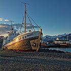 Akurey by anorth7