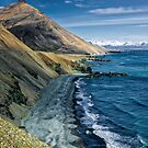 East Icelandic Coast by Adam Northam