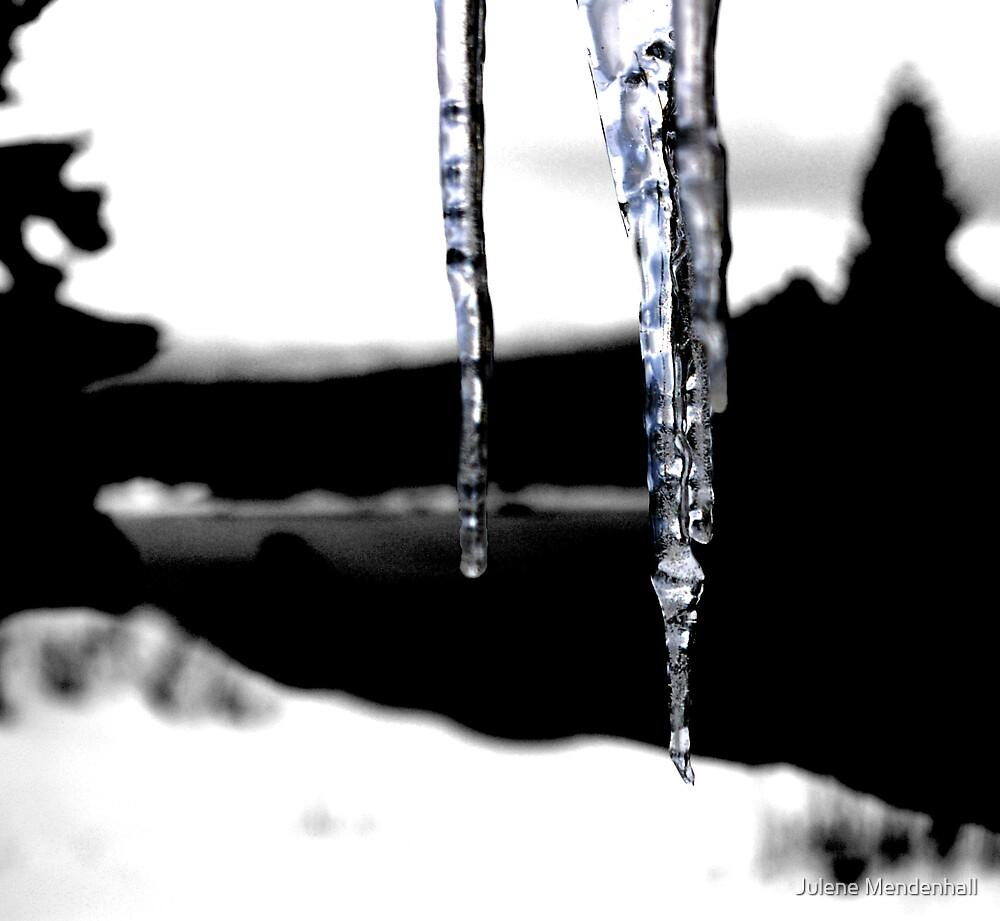 Ice by Julene Mendenhall
