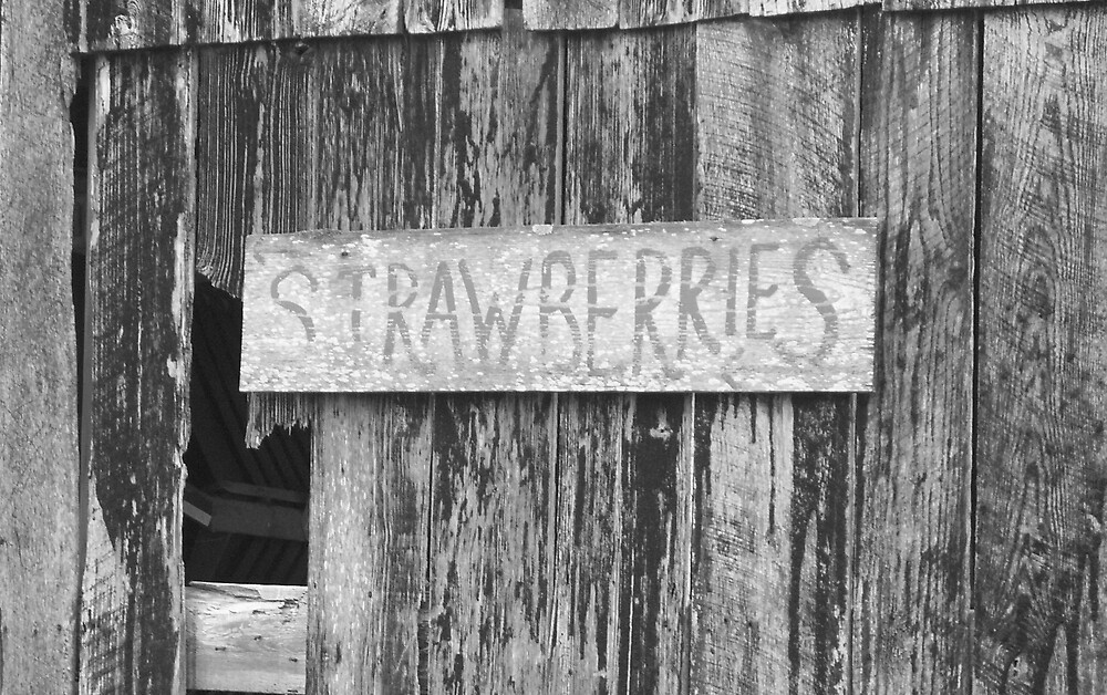 Strawberries for Sale by Rebecca Ogden