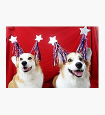 Star Spangled Corgis Photographic Print