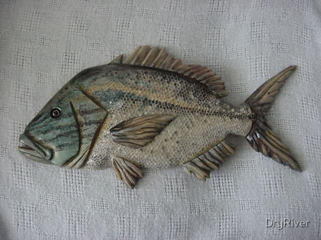 White Grunt- Wooden Fish by DryRiver