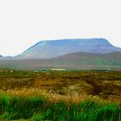 Wild Donegal, Ireland by Shulie1