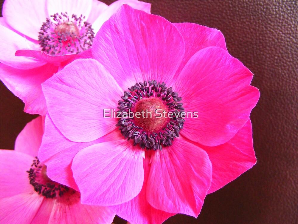florally delicious by Elizabeth Stevens
