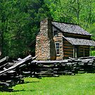 John Oliver Cabin by Lisa G. Putman