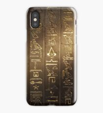 ACO iPhone Case/Skin
