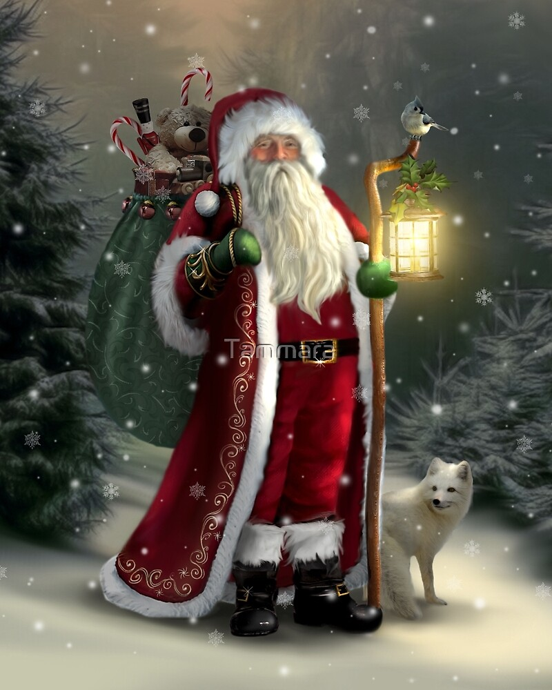 The Christmas Traveler by Tammara