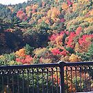 Valley Colors from the Bridge by cap10mike