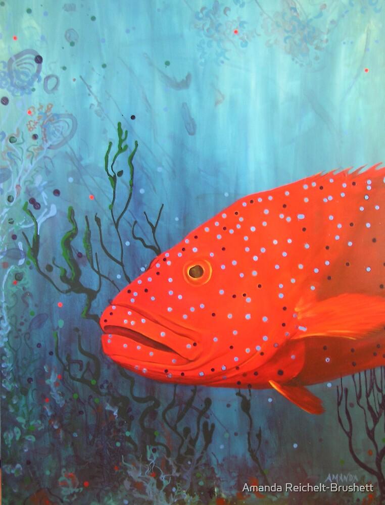 coral trout by Amanda Reichelt-Brushett