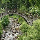 Of Mountain Creeks and Olden Bridges by Georgia Mizuleva