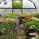 At The Lawn and Garden center by WildestArt