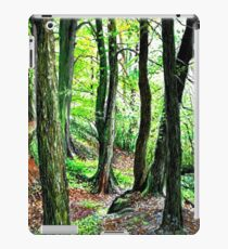 Brock Bottom Giants iPad Case/Skin