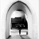 Through the arch by racey1876
