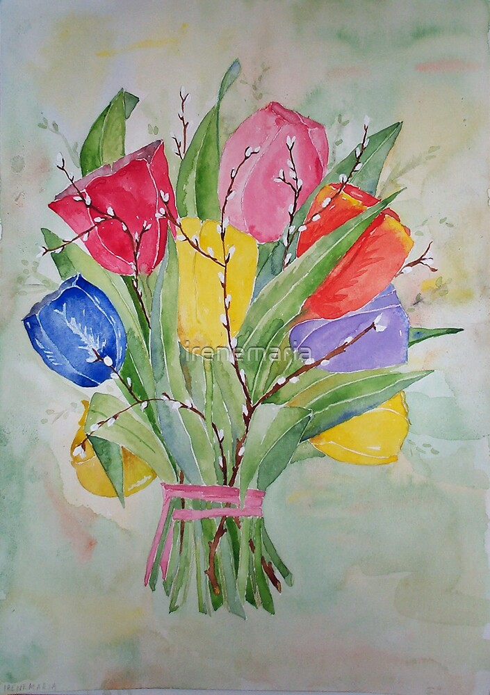 Colours Tulips by irenemaria