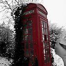British wintertime by Caroline Cage