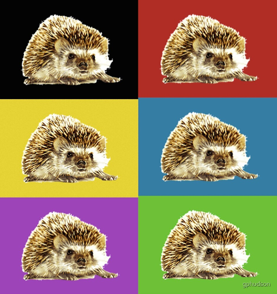 An Array of Hedgehogs by gphudson