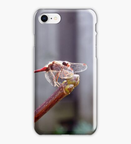 Temporary Moments iPhone Case/Skin