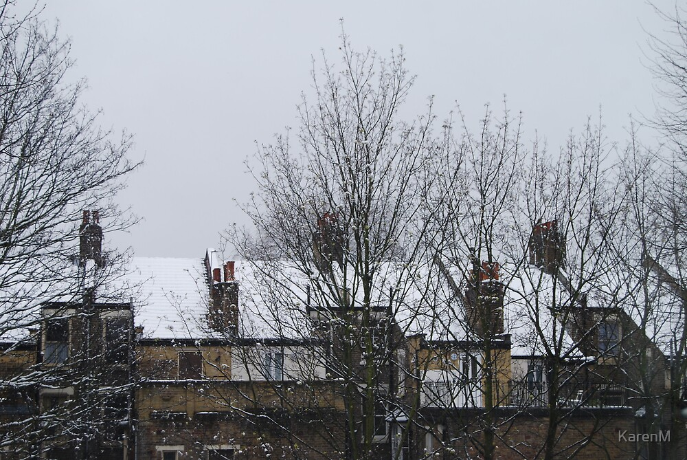 Snow Roofs by KarenM