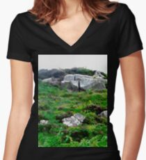 Irish boulders, Donegal, Ireland Women's Fitted V-Neck T-Shirt