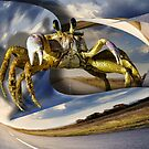 Stepping Out Crabby by GolemAura