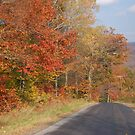Country Road 2 by Sarah McKoy