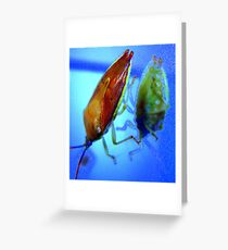 Stink Bug Blues Greeting Card