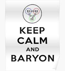 Keep calm and Baryon - Physics pun Poster