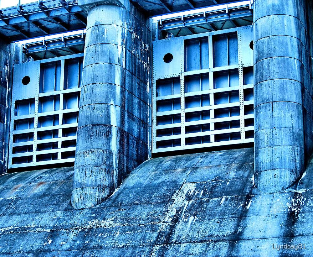 Dam Doors  by Lyndsay81