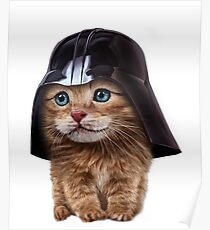 Fluffy Siamese Cat Wearing Darth Helmet Poster
