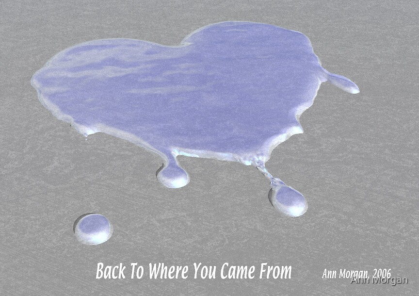 Back To Where You Came From by Ann Morgan