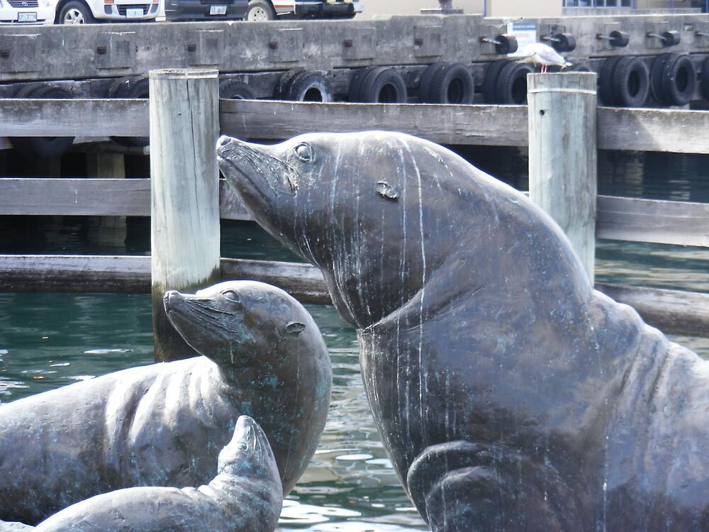 Seals by jbrinx27