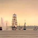 Morning of Glory - Sail Boston 2017 by LudaNayvelt