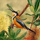 Eastern Spinebill Honeyeater by Margaret Stockdale