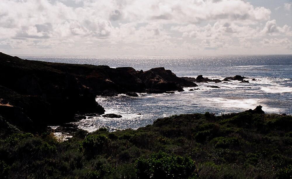 Shimmering Sea by Jerry Stewart