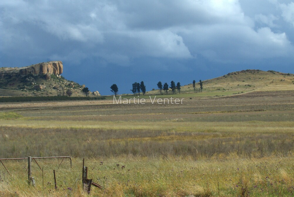 Eastern Free State Thunderstorm by Martie Venter
