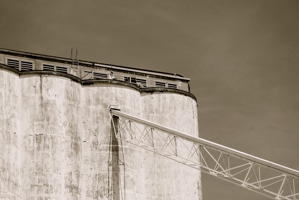 Grain Elevator by Robert Baker