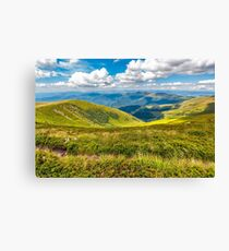 hill side meadow in summer Canvas Print