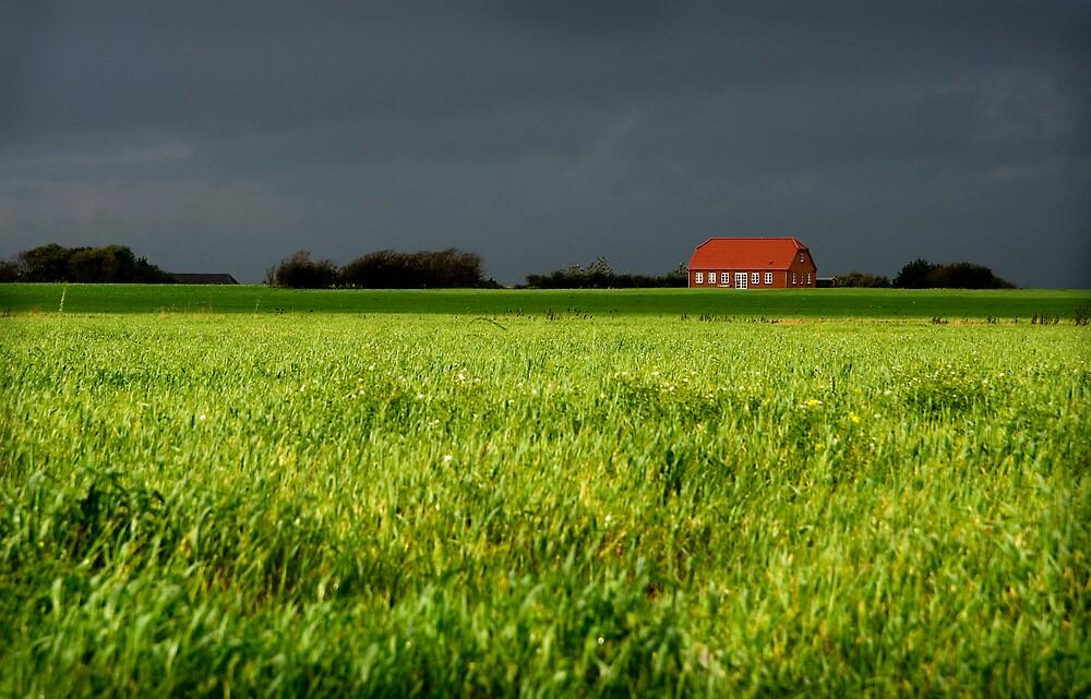 The farm by BenteKlevenberg